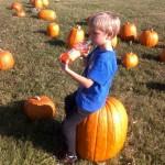 Preschoolers visit Darden's Farm Pumpkin Patch